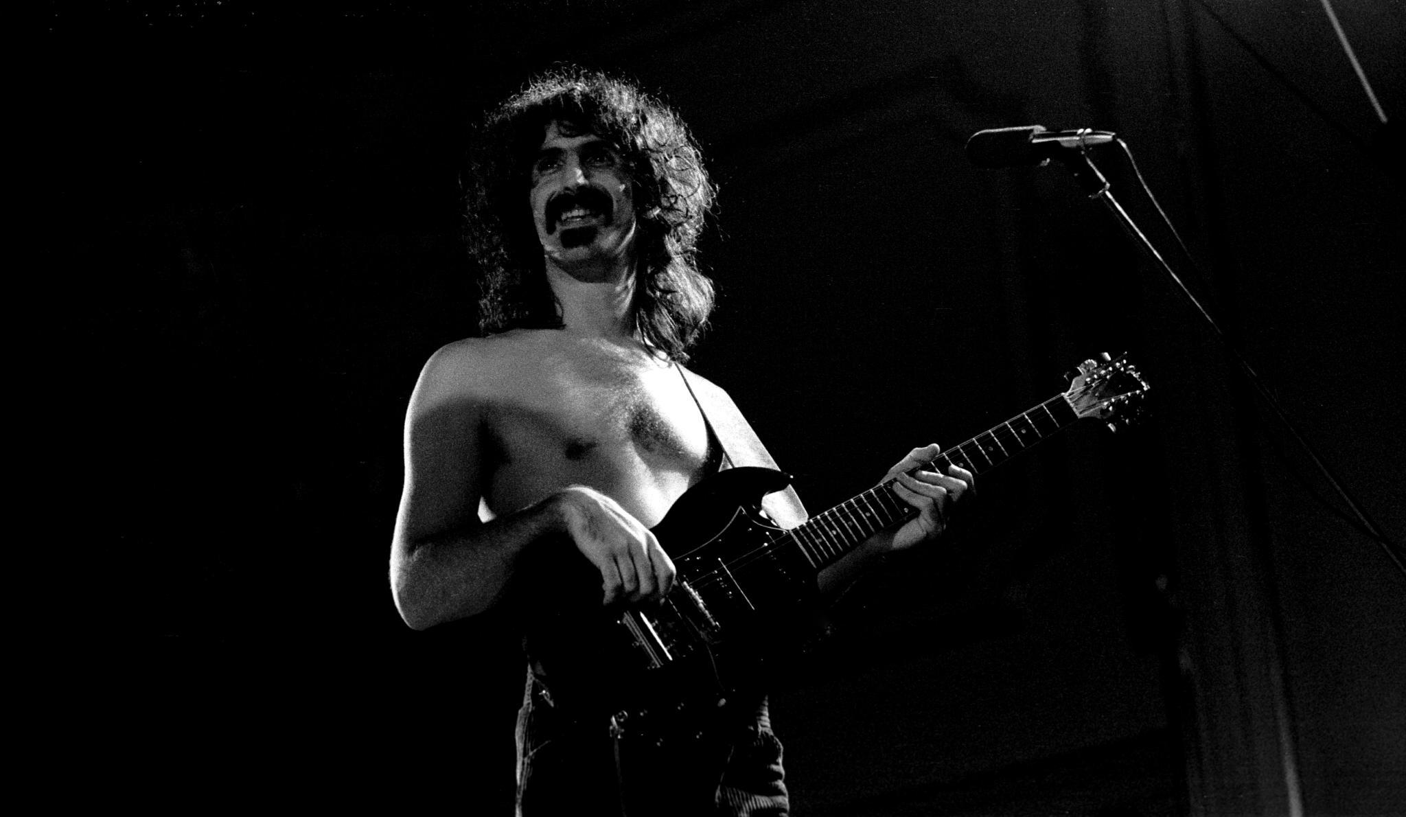 A Method in Exploring the Frank Zappa Album's Catalog