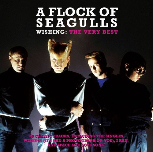 A Flock Of Seagulls Songs