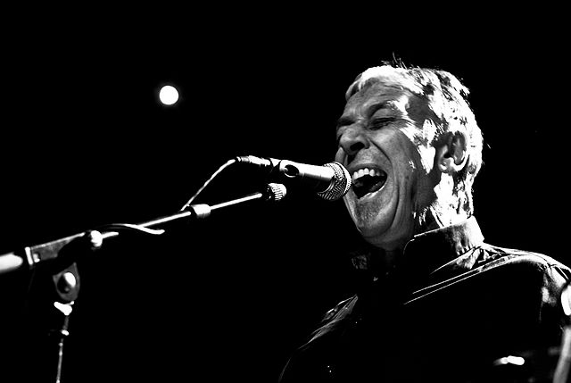 Top 10 John Cale Songs From His Solo Albums