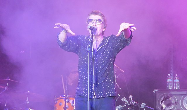 Psychedelic Furs Songs